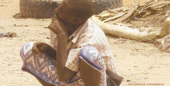 lost livestock fulani die nigeria