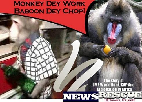 monkey_dey_work_baboon_dey_chop