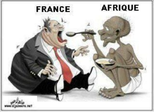 Image result for Africa feeding france