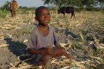 Full-Zimbabwe-Boy-in-Field