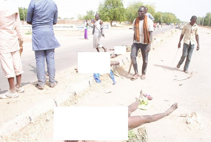 Civilian JTF last week chased and killed boko Haram terrorists with sticks and swords