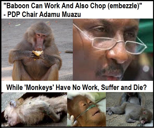 muazu baboons