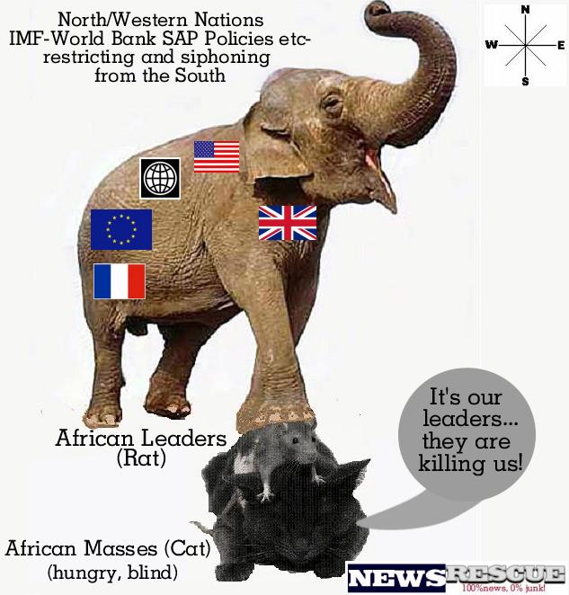 imf-sap-africa
