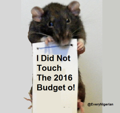 rat budget